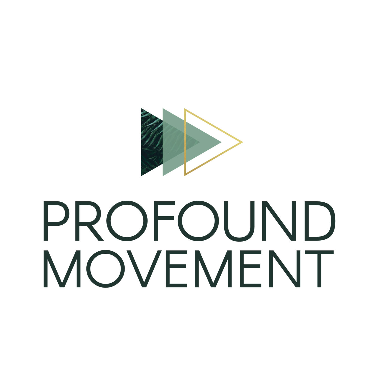 Profound Movement | Corporate Wellness Training | Philadelphia Training