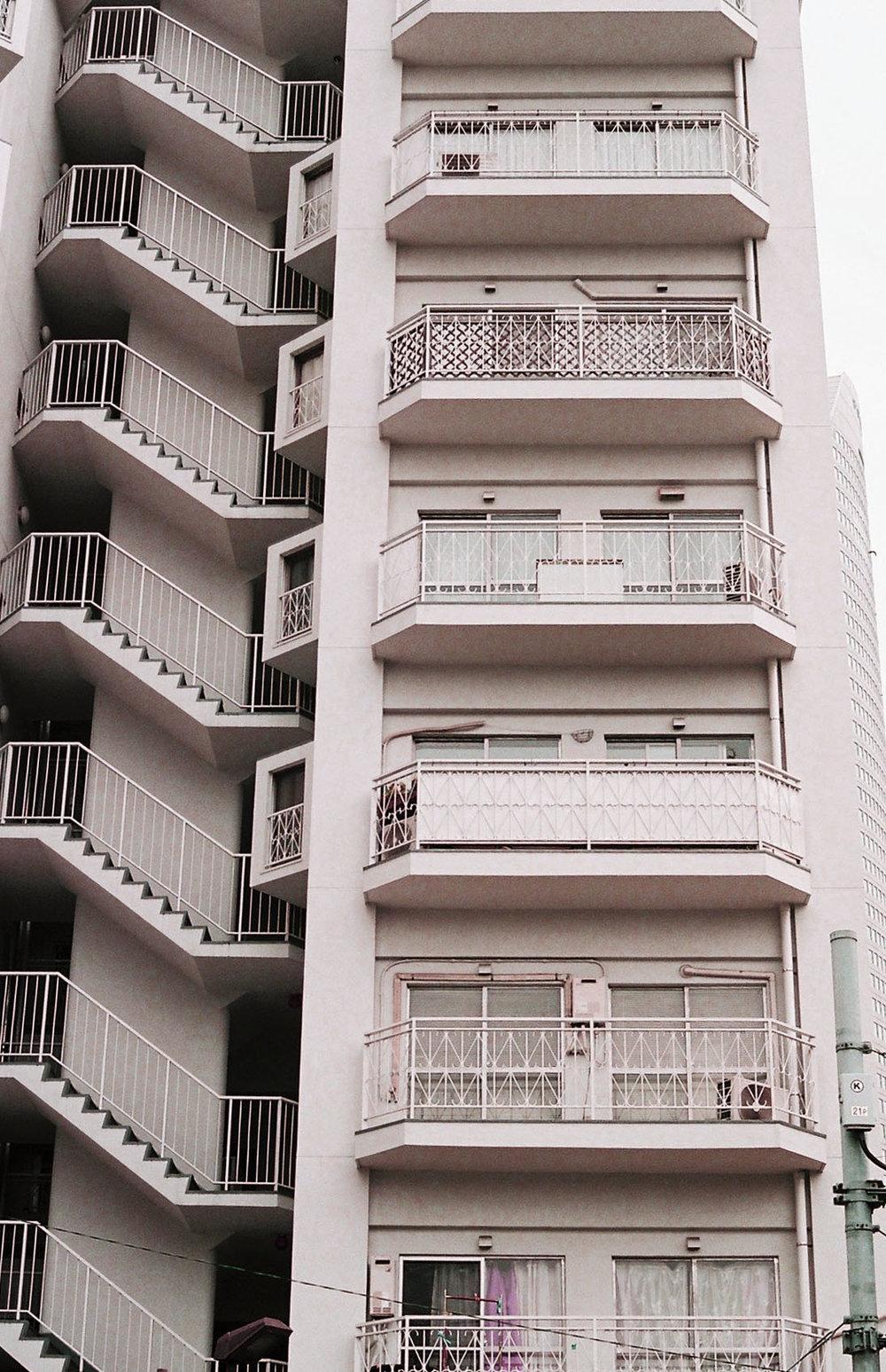 buildingrose.jpg