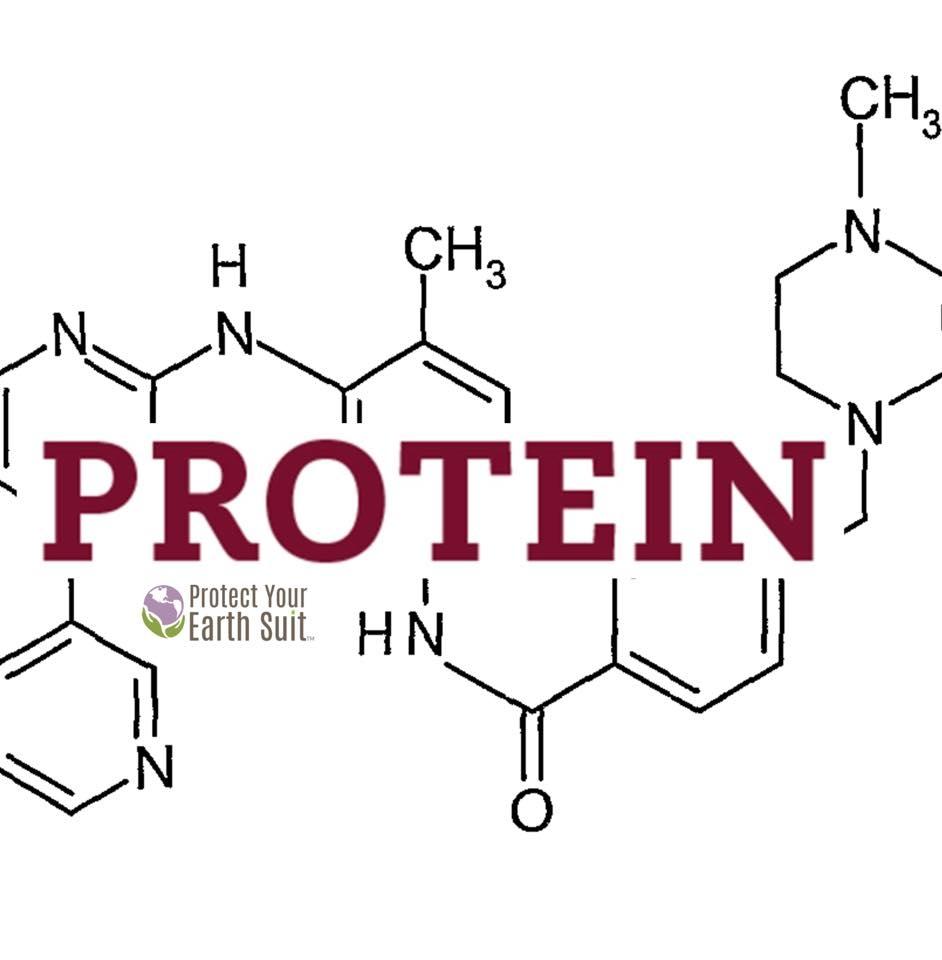 2 Protein.jpg