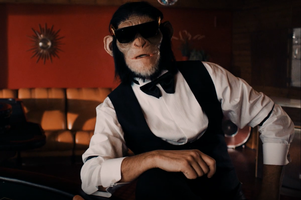 Monkey Bet - Commercial
