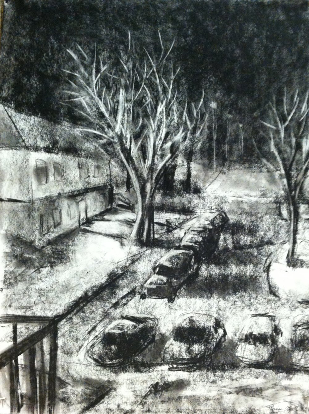 Landscape  Charcoal on white paper  2014