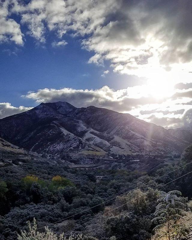 Hello Utah. • • • #utahmountains #utahphotography #dogpark #tannerpark #wasatchmountains
