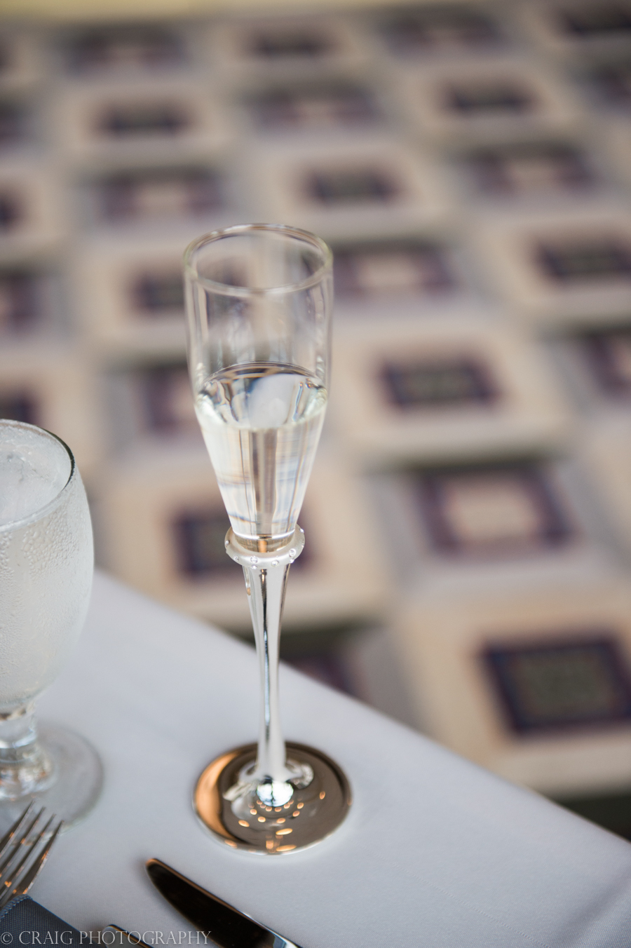 Duquesne University Power Center Ballroom Weddings-0044