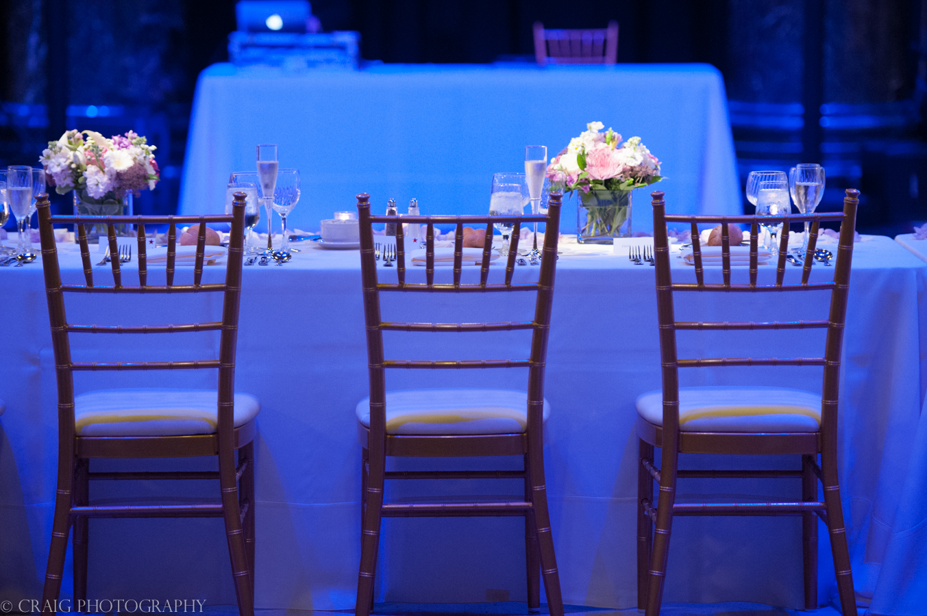 Carnegie Museum Wedding and Receptions -0032