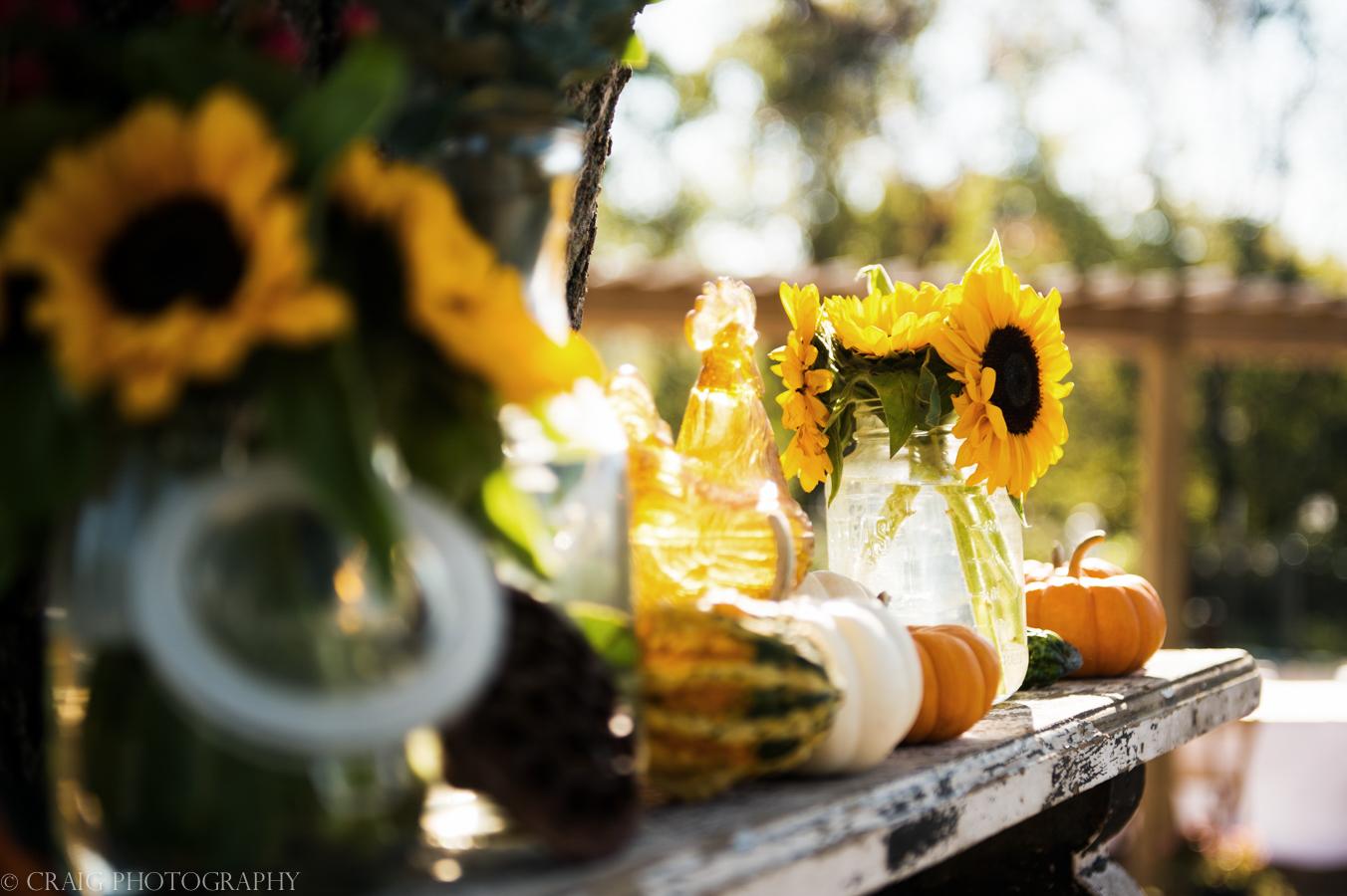 Churchview Farms Weddings Pittsburgh-0045