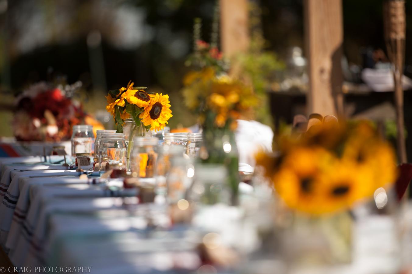 Churchview Farms Weddings Pittsburgh-0143