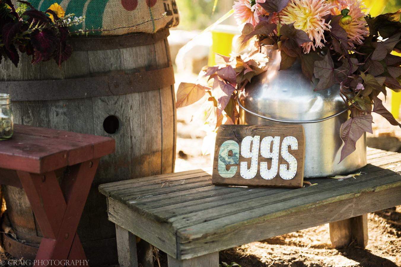 Churchview Farms Weddings Pittsburgh-0009