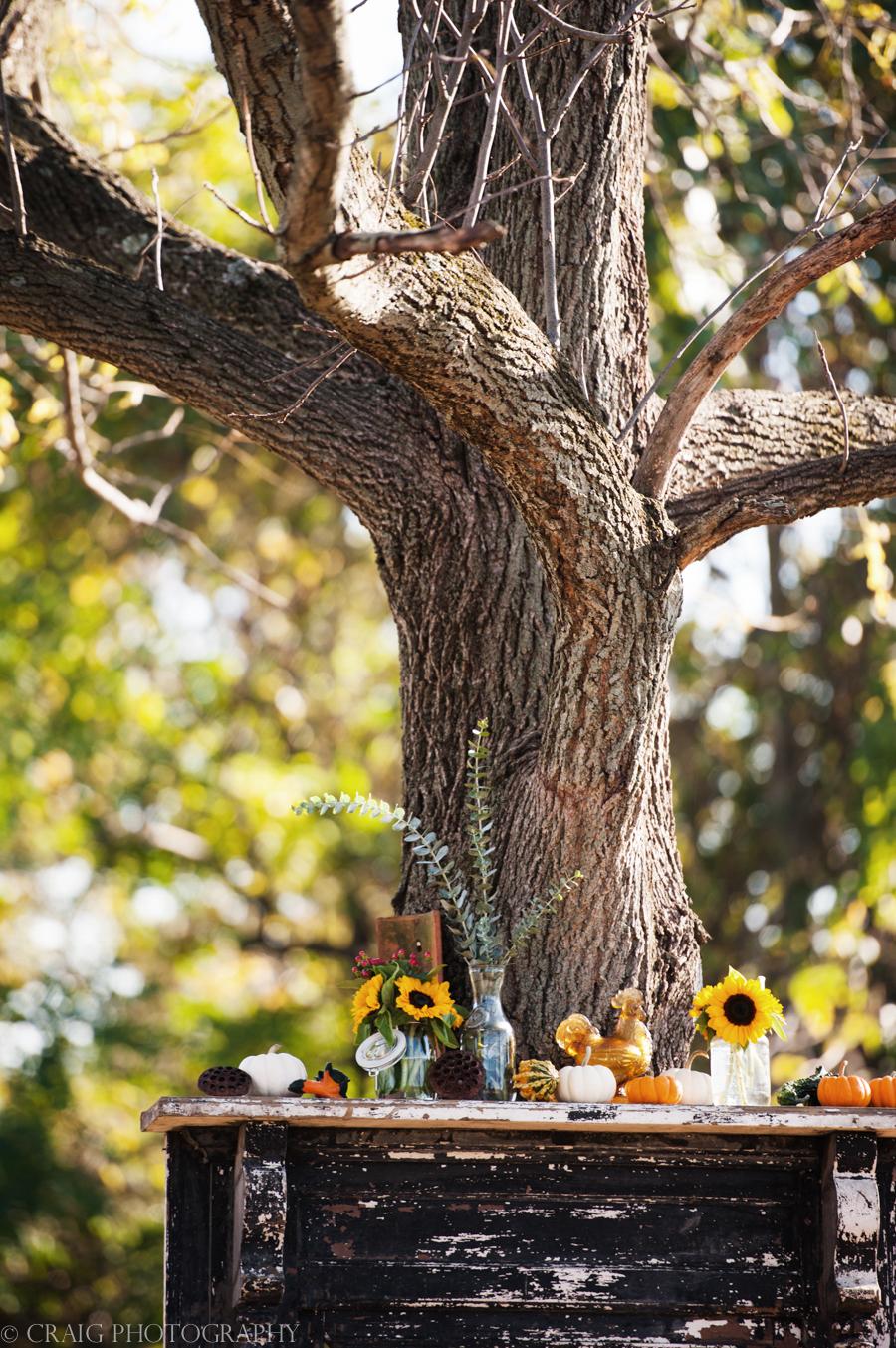 Churchview Farms Weddings Pittsburgh-0010