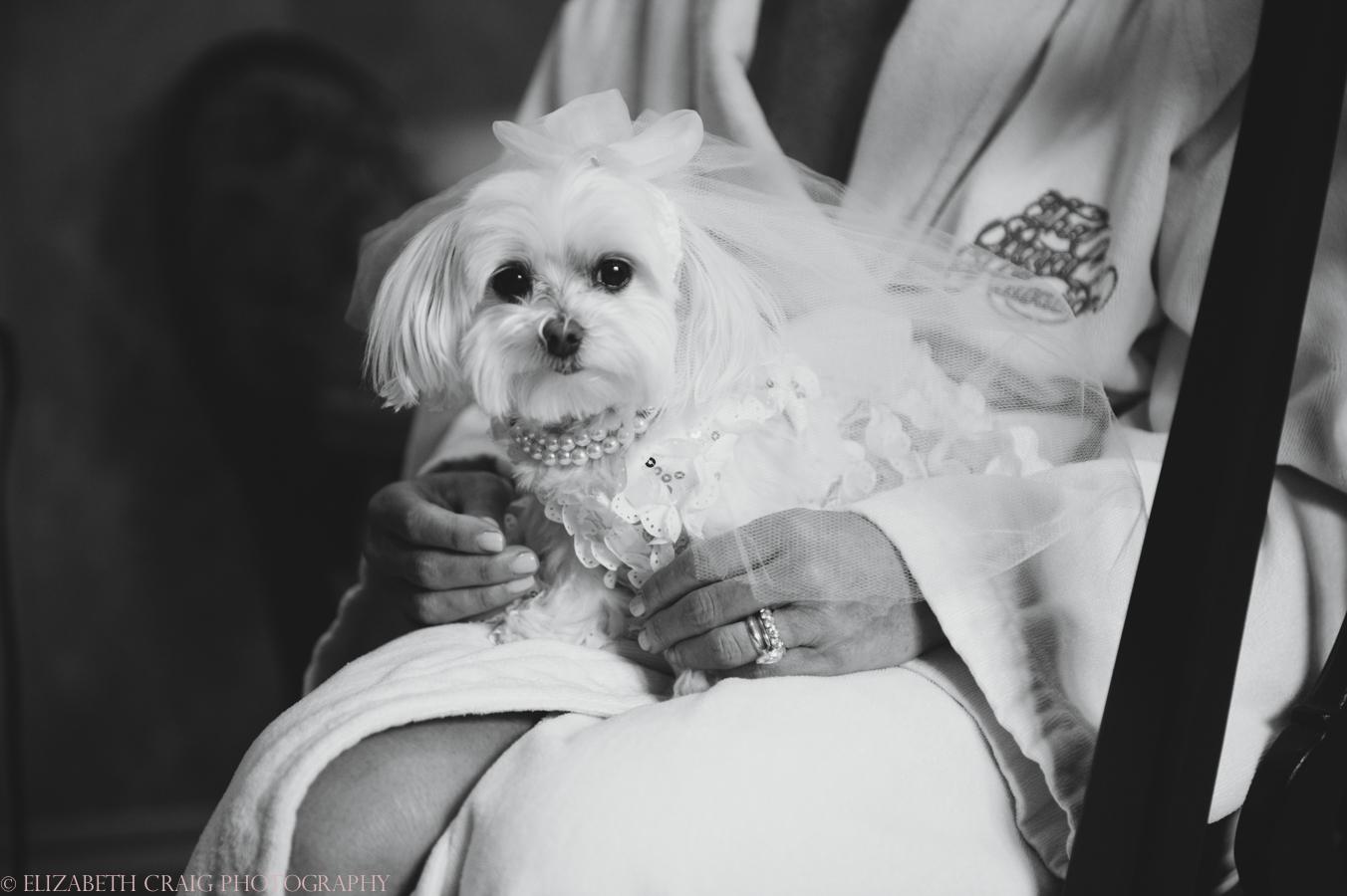 Sacred Heart Parish Omni William Penn Weddings Pittsburgh-0010