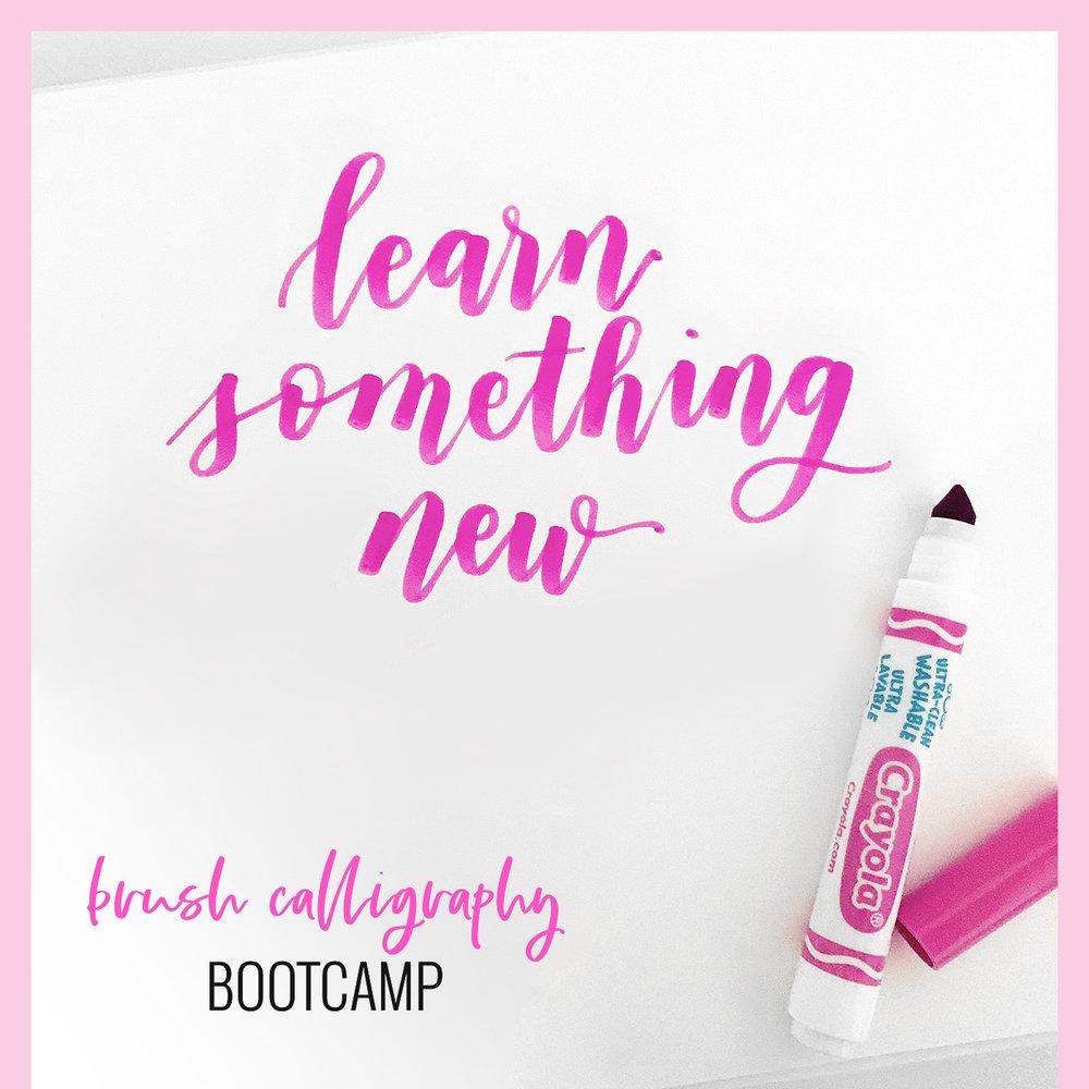 brush calligraphy bootcamp -