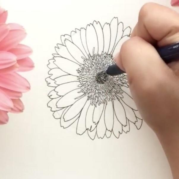 Loose Florals & Sketching Florals - JessJeshyPark