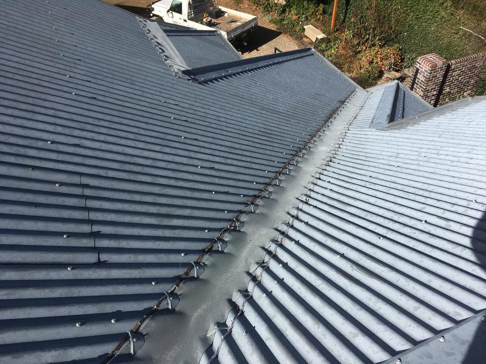 roof-IMG_2670.jpg