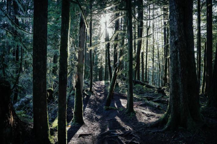 Poop Alley in Squamish | This Pilgrim's Progress | Lorraine Yeung
