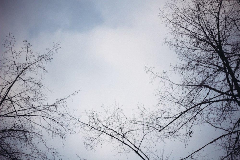 Christmas-Eve-Squamish267.jpg