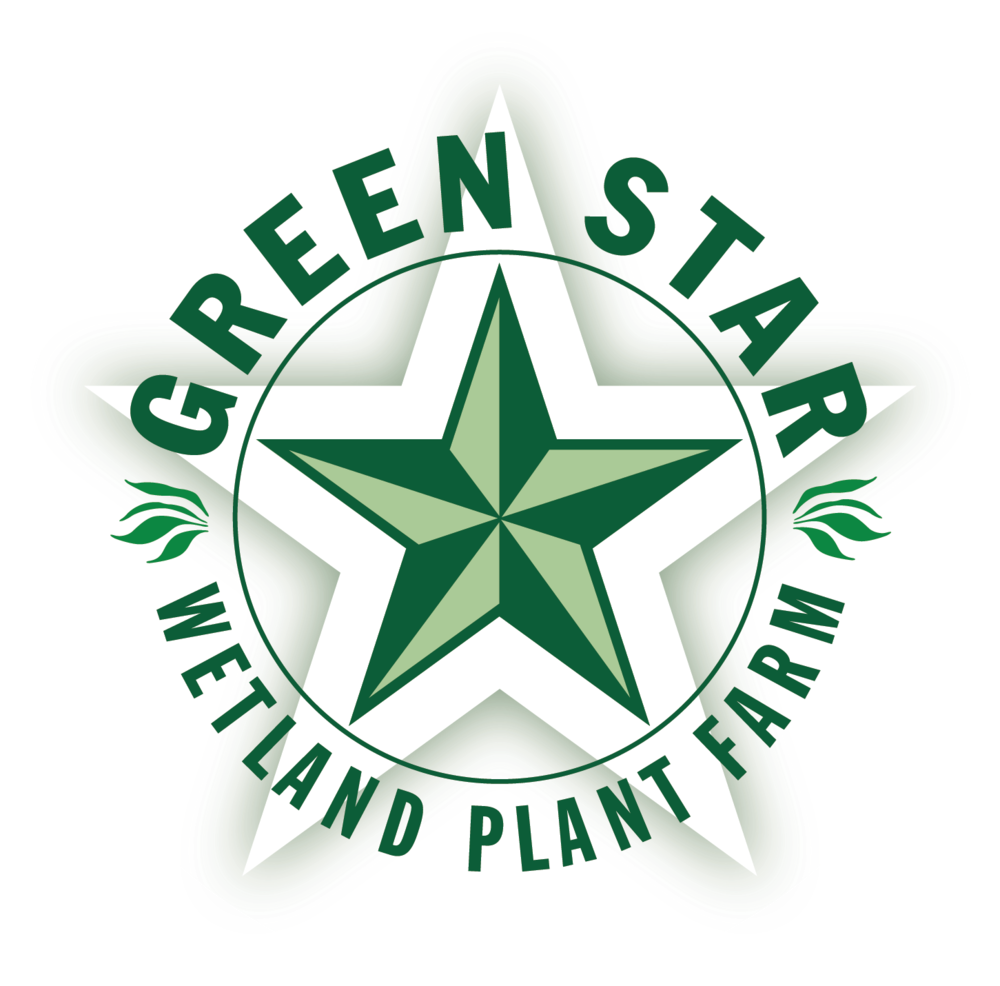 Green Star Wetland Plant Farm