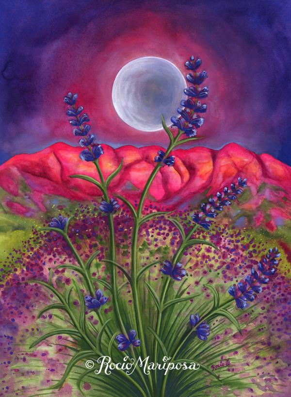 Lavender Moon