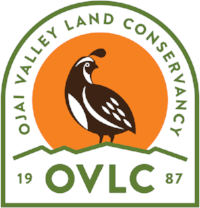 ovlc-logo-04.png