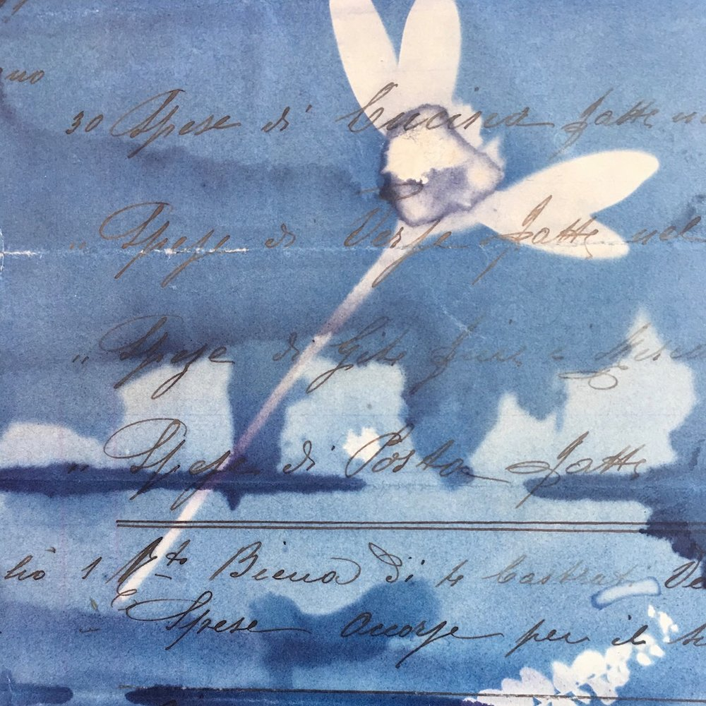 cyanotype:old paper.jpeg