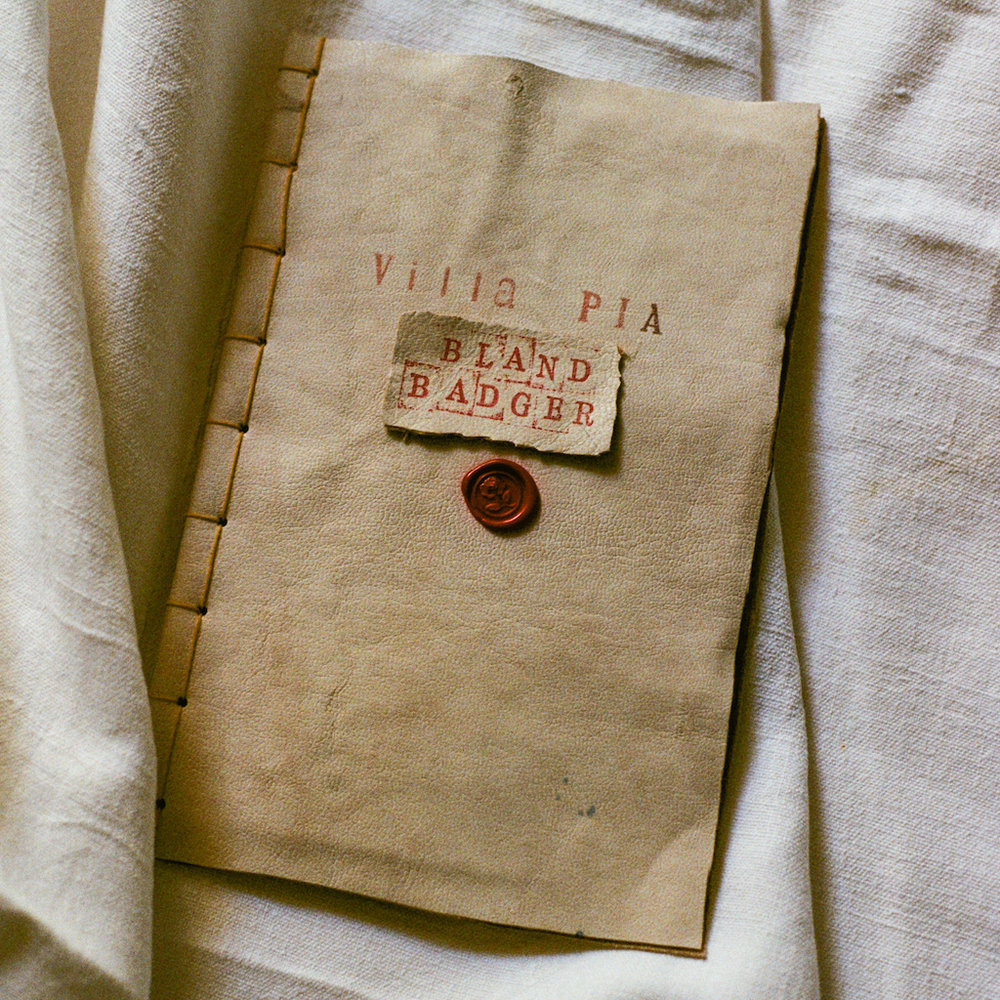leather book.jpeg