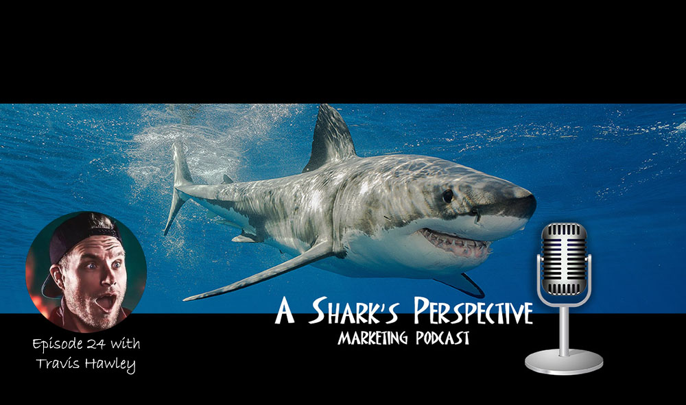 a_sharks_perspective_episode_24_travis_hawley.jpg