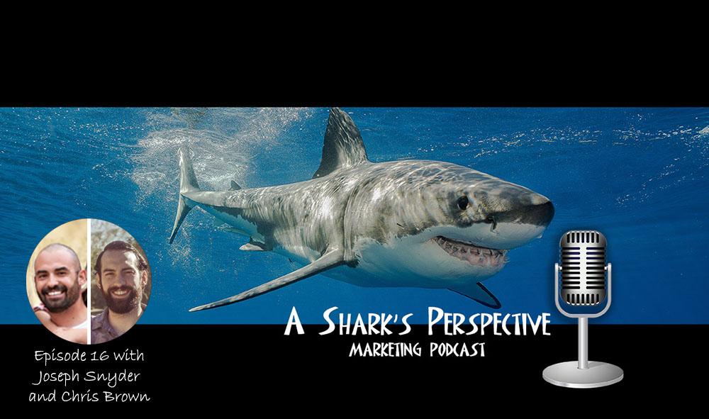 a_sharks_perspective_episode_16_joseph_snyder_chris_brown.jpg