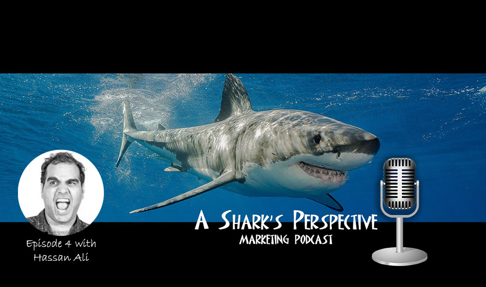 a_sharks_perspective_episode_4_hassan_ali.jpg