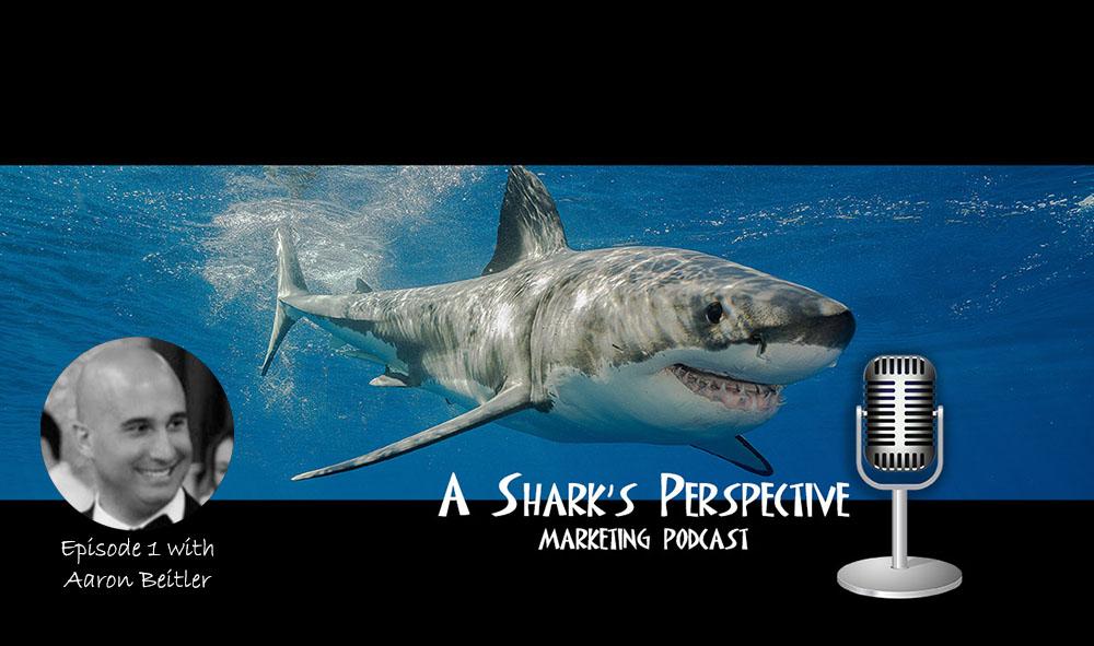a_sharks_perspective_episode_1_aaron_beitler.jpg
