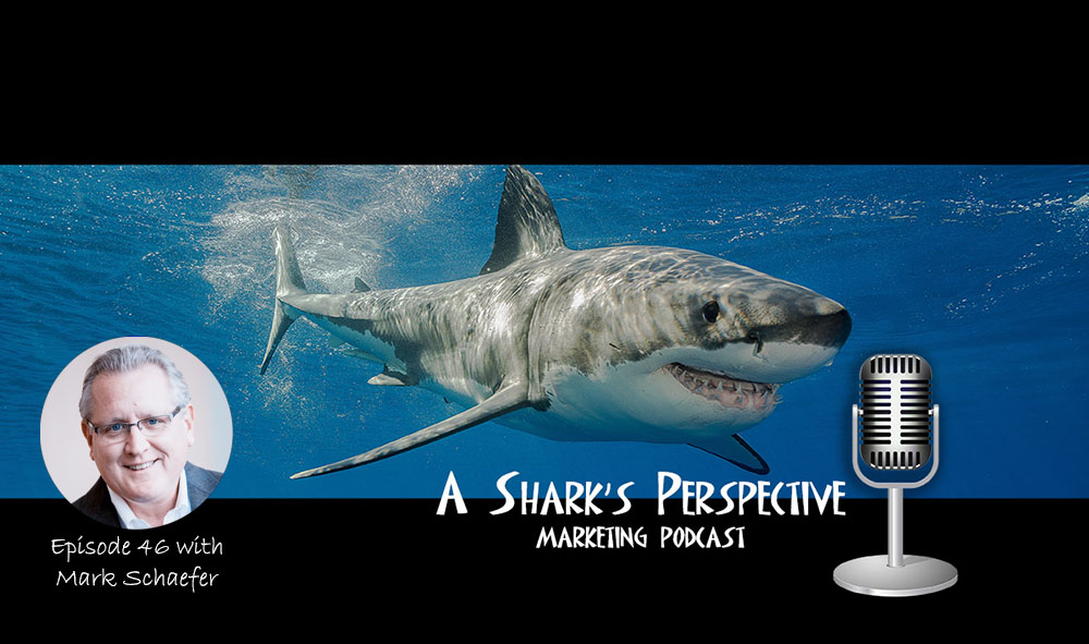 a_sharks_perspective_episode_46_mark_schaefer.jpg
