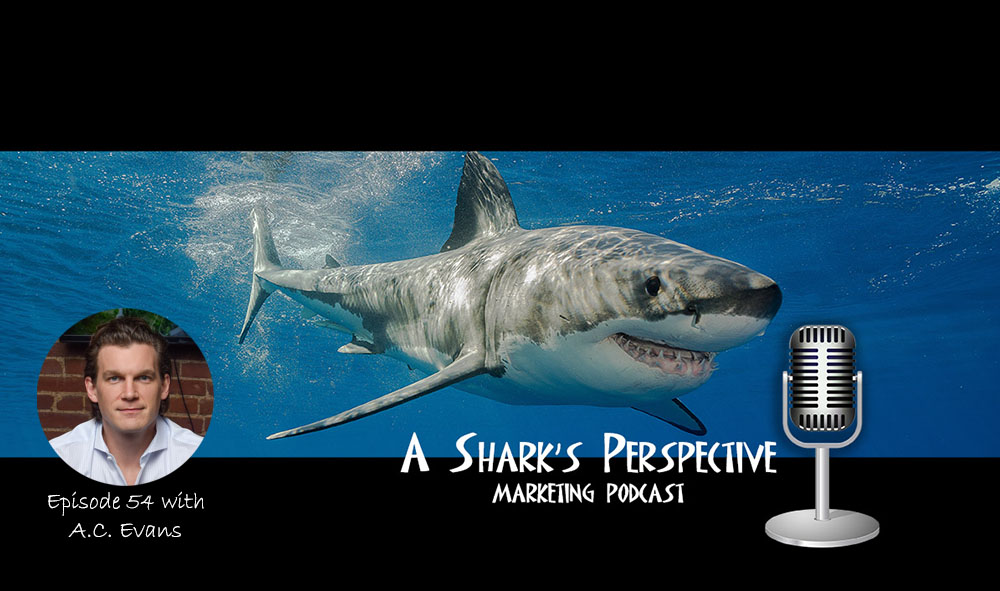 a_sharks_perspective_episode_54_ac_evans.jpg