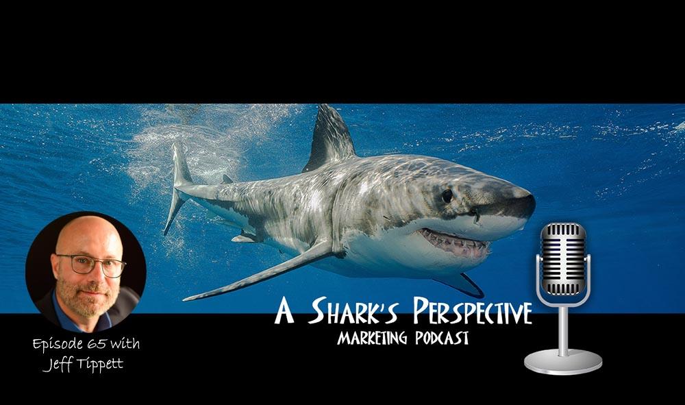 a_sharks_perspective_episode_65_jeff_tippett.jpg