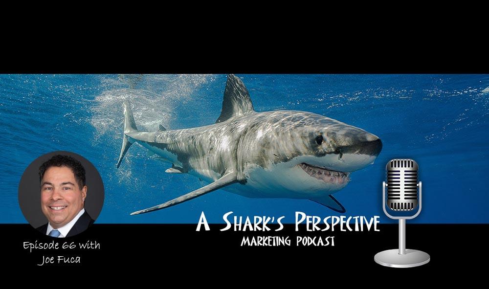 a_sharks_perspective_episode_66_joe_fuca.jpg