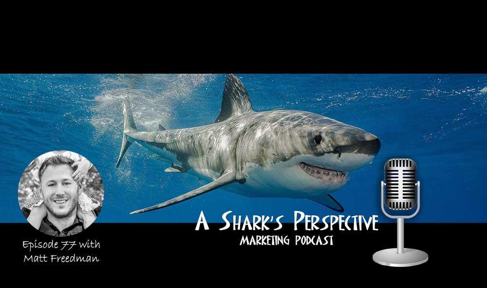 a_sharks_perspective_episode_77_matt_freedman.jpg