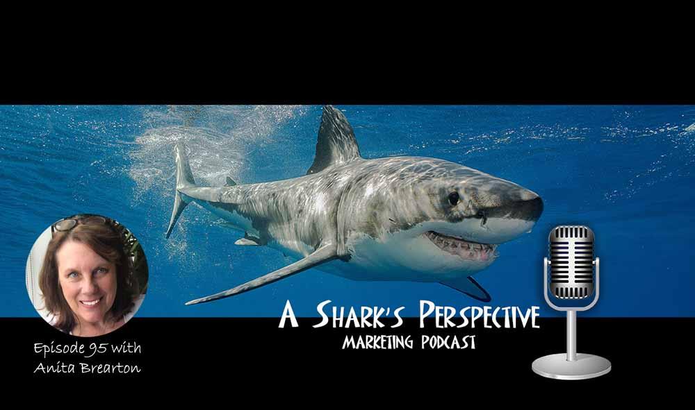 a_sharks_perspective_episode_95_anita_brearton.jpg