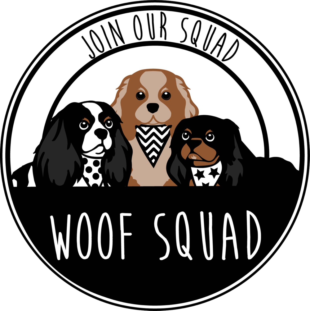 woof-squad-pet-services