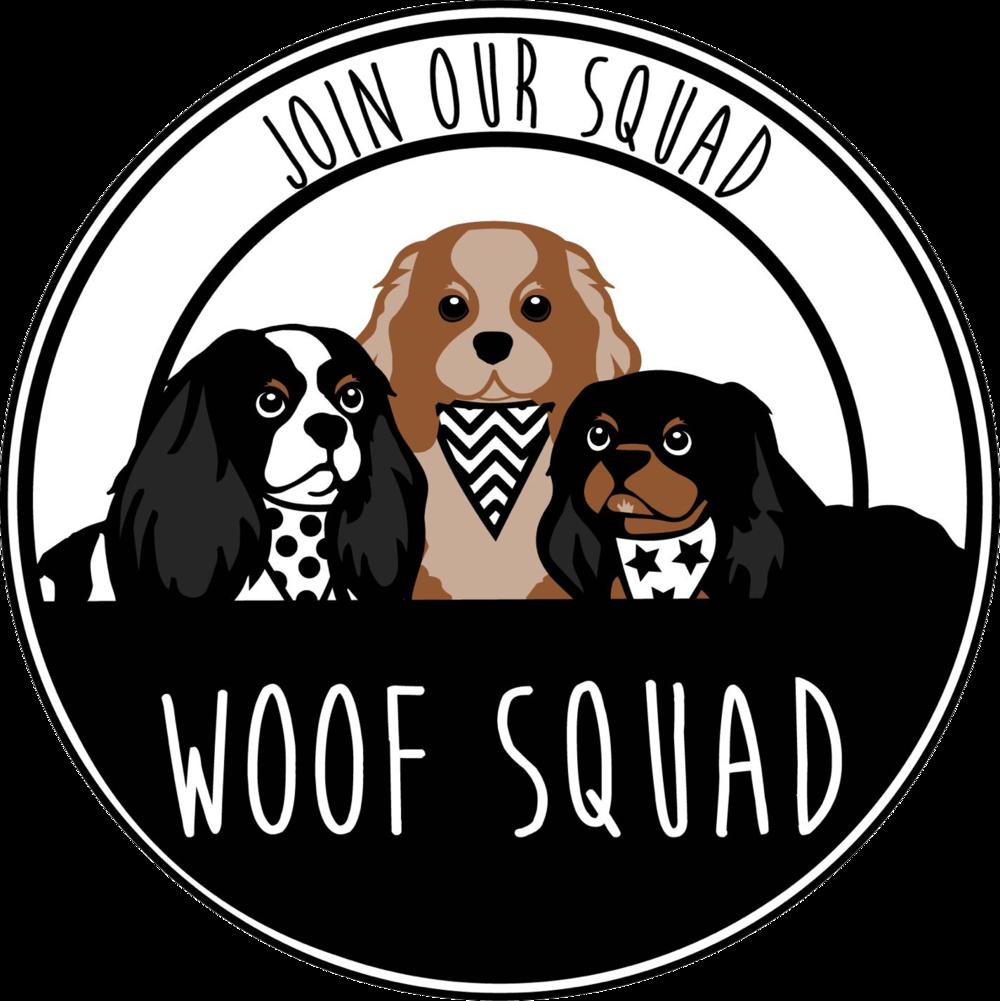 woof-squad-pet-services