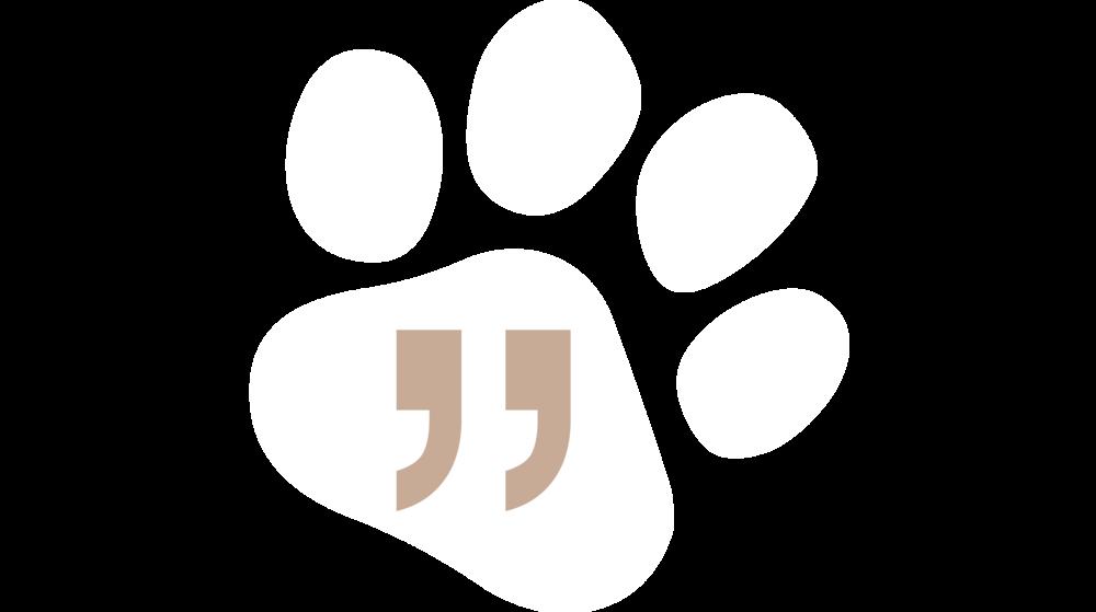 woof-squad-pet-sitting-quote