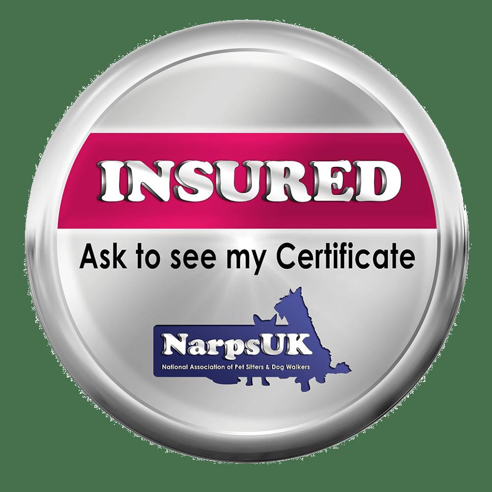 fully insured dog walker