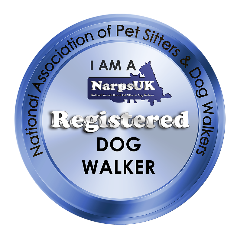 woof squad registered dog walker and pet sitter in cheshire