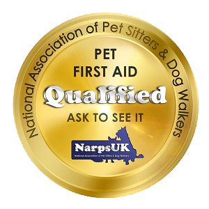 woof squad first aid trained dog walker, pet sitter and other pet services in cheshire