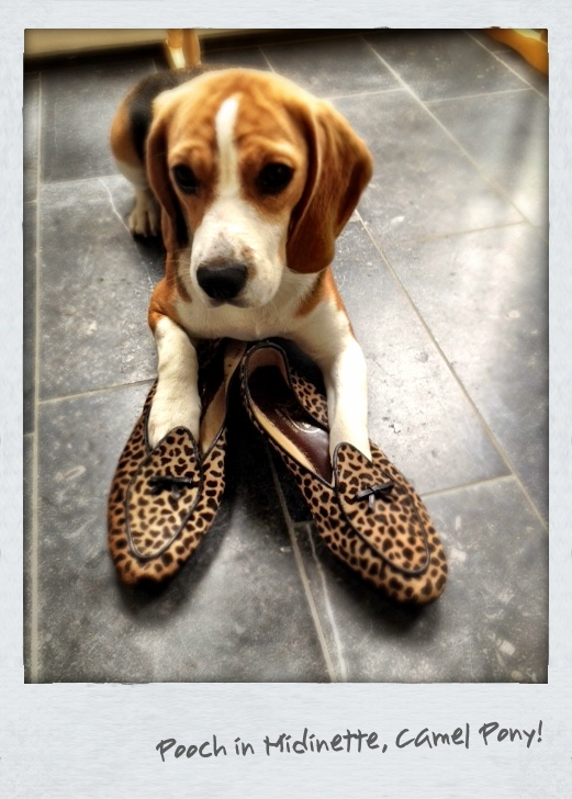 Belgian Shoes - Belgium Aug 2012 (10).JPG