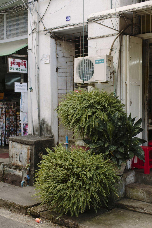 MacCormick_Yangon_Gardens-24.jpg