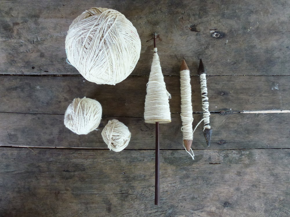 Cotton ( Gossypium  sp.), spun into a thread for textile-making | Lewis Daly / Guyana / 2013