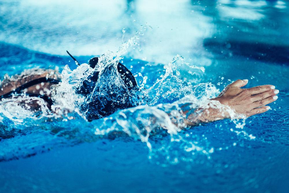 professional-swimmer-in-training-indoor-swimming-PDV8MU7 (1).jpg