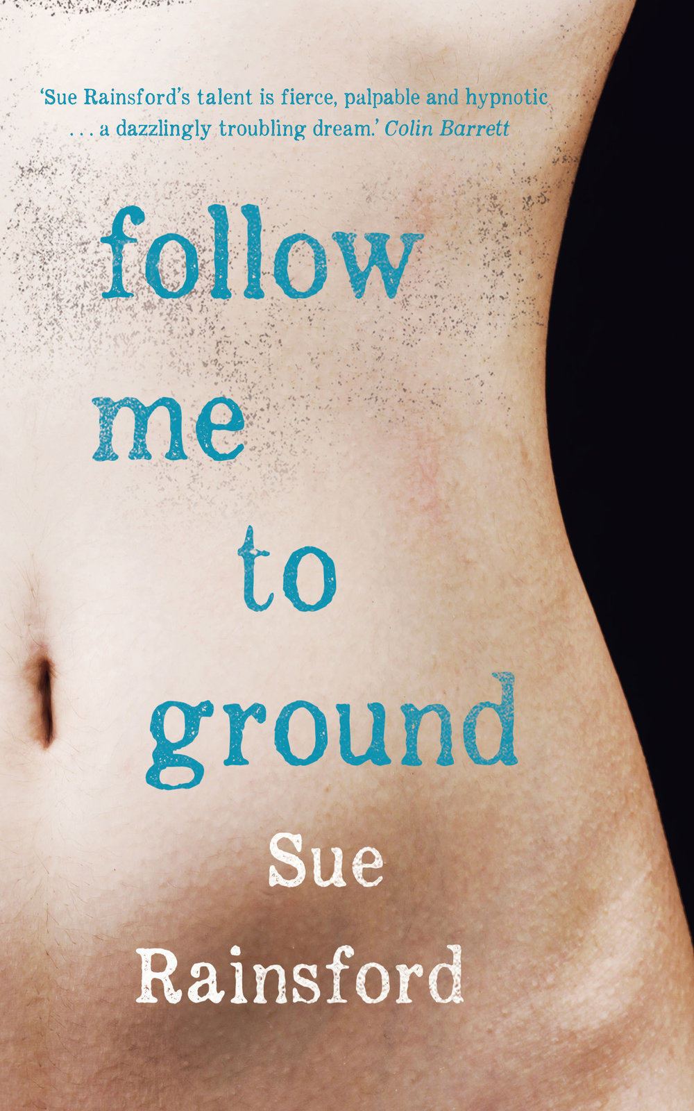 Follow me to Ground by Sue Rainsford, New Island Books
