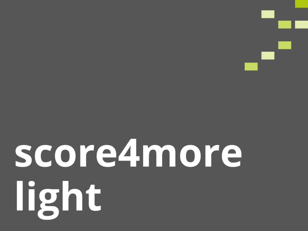 ✓ Light-Report  ✓ Scoring Kriterienebene  ✓ Individuelles Feedback  ✓ 4x Dashboard für alle Kriterien