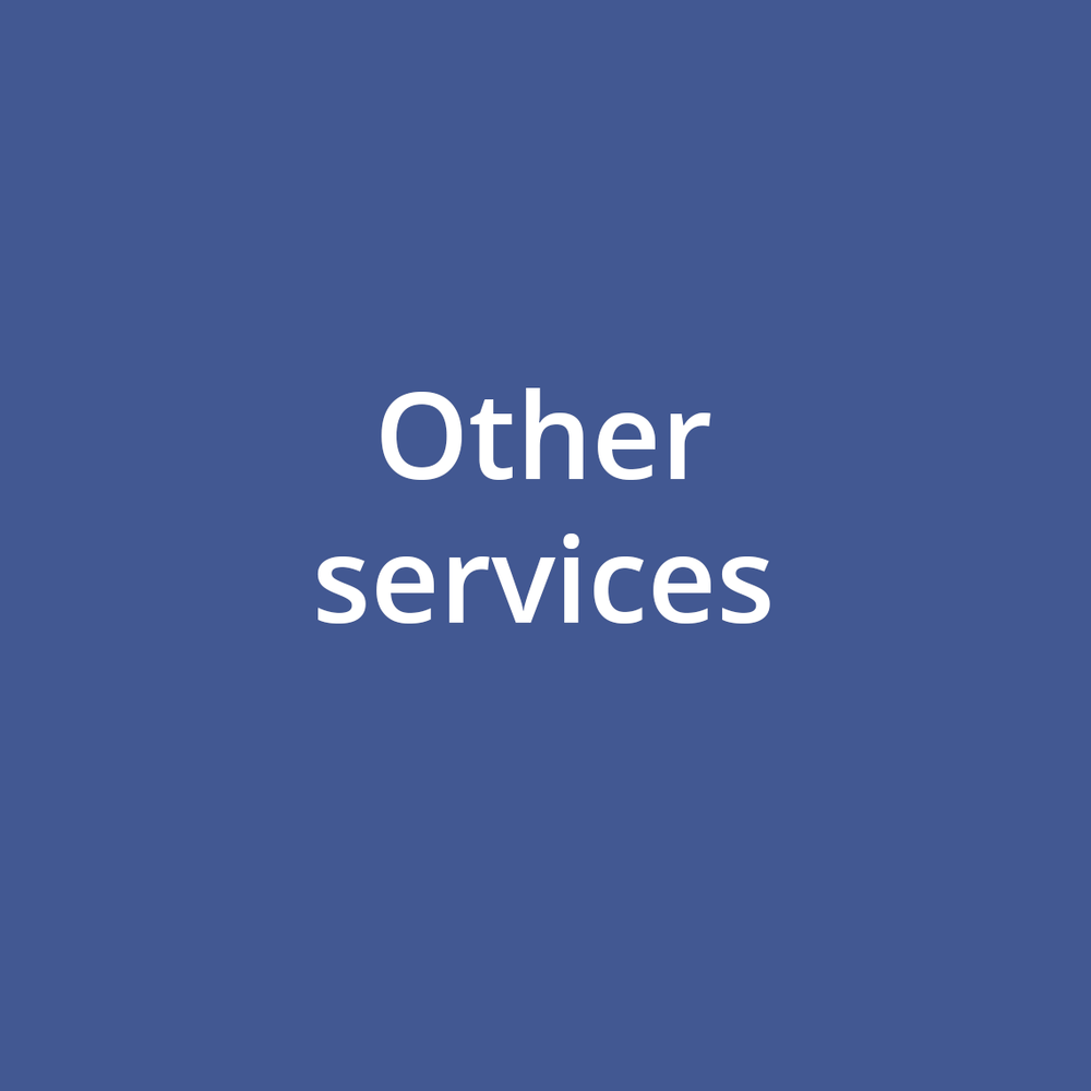 other services dark blue.png
