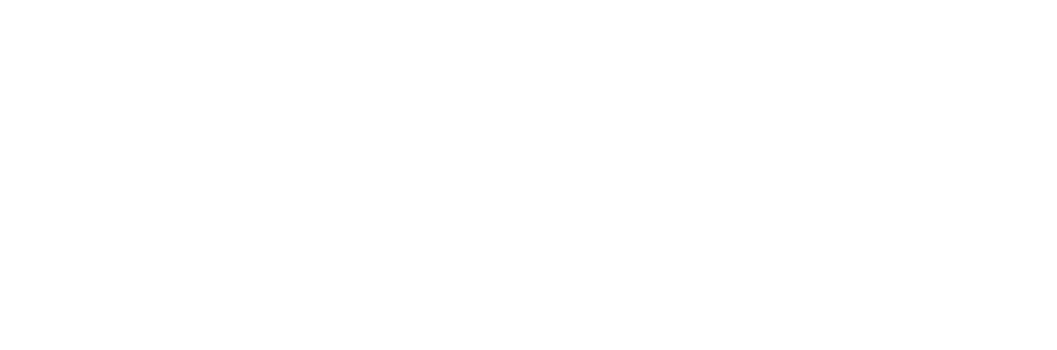 Emergency Information Systems