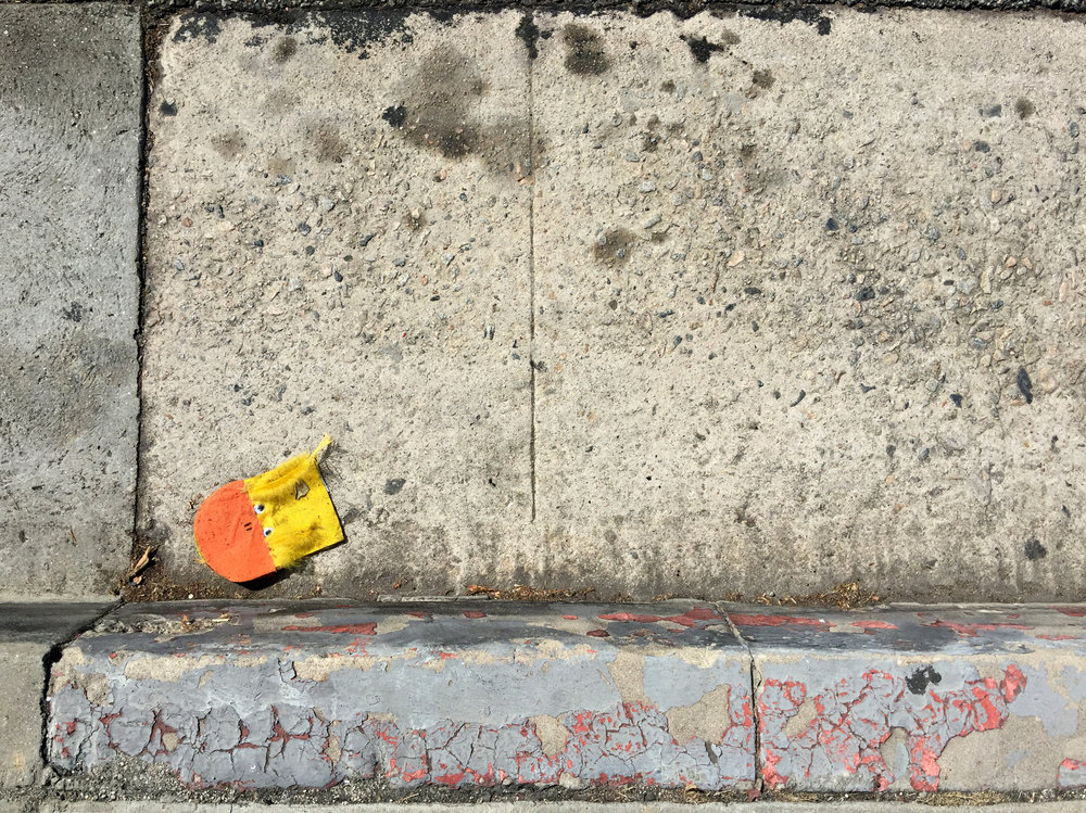 Duck at the Curb -