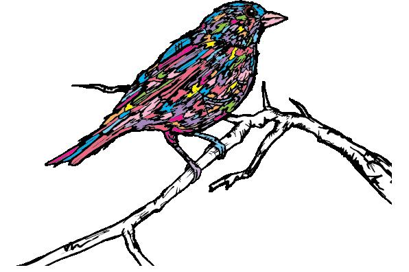 songbird-logo.png