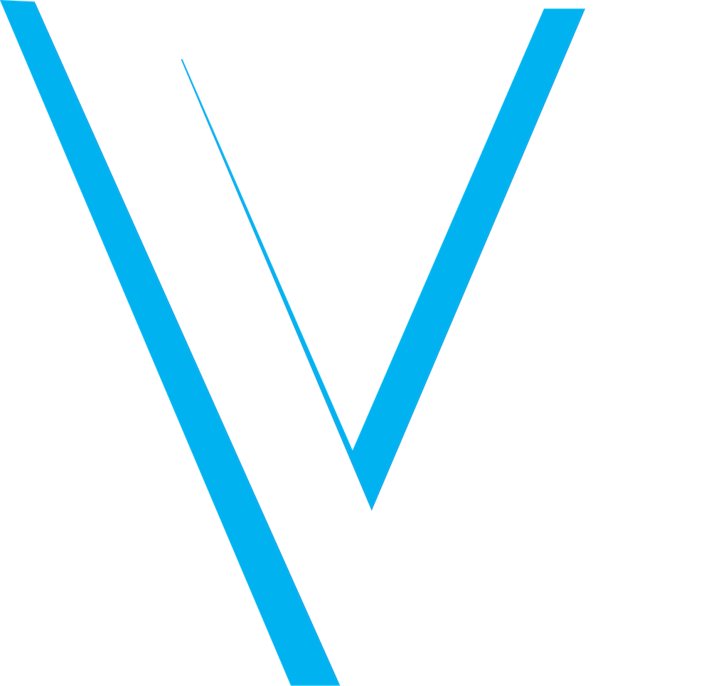 Vibe Volleyball Club